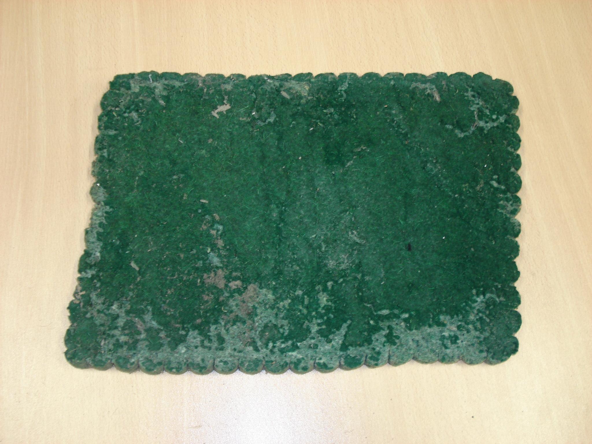 Tapete verde PATRICIO ELORZA