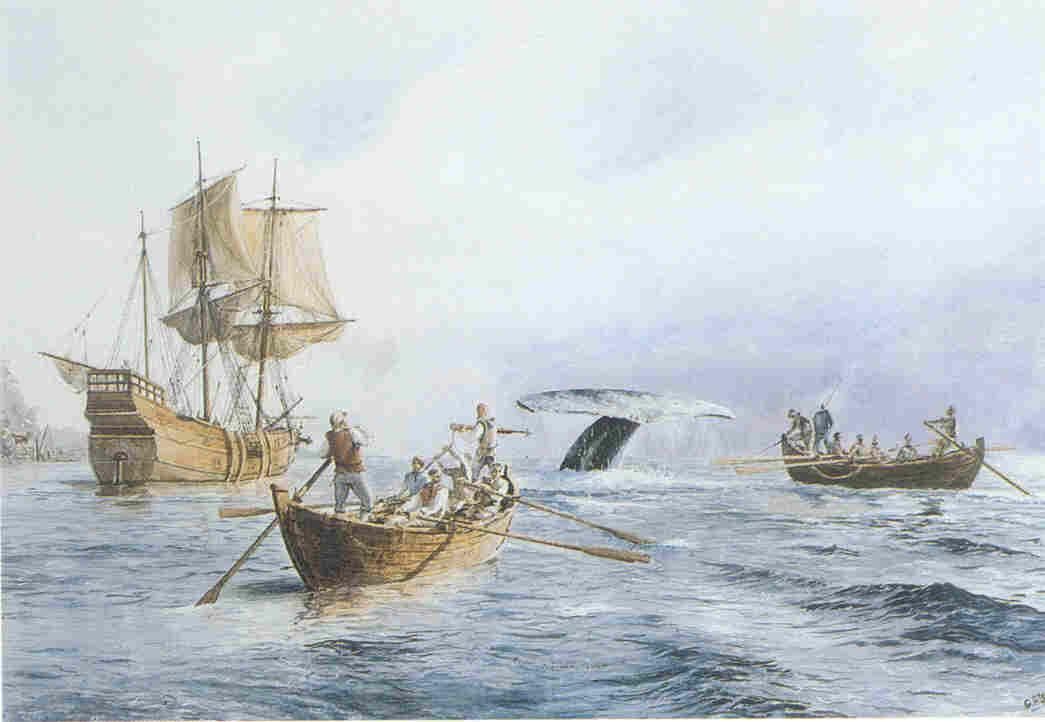 La caza de la ballena en el siglo XVI