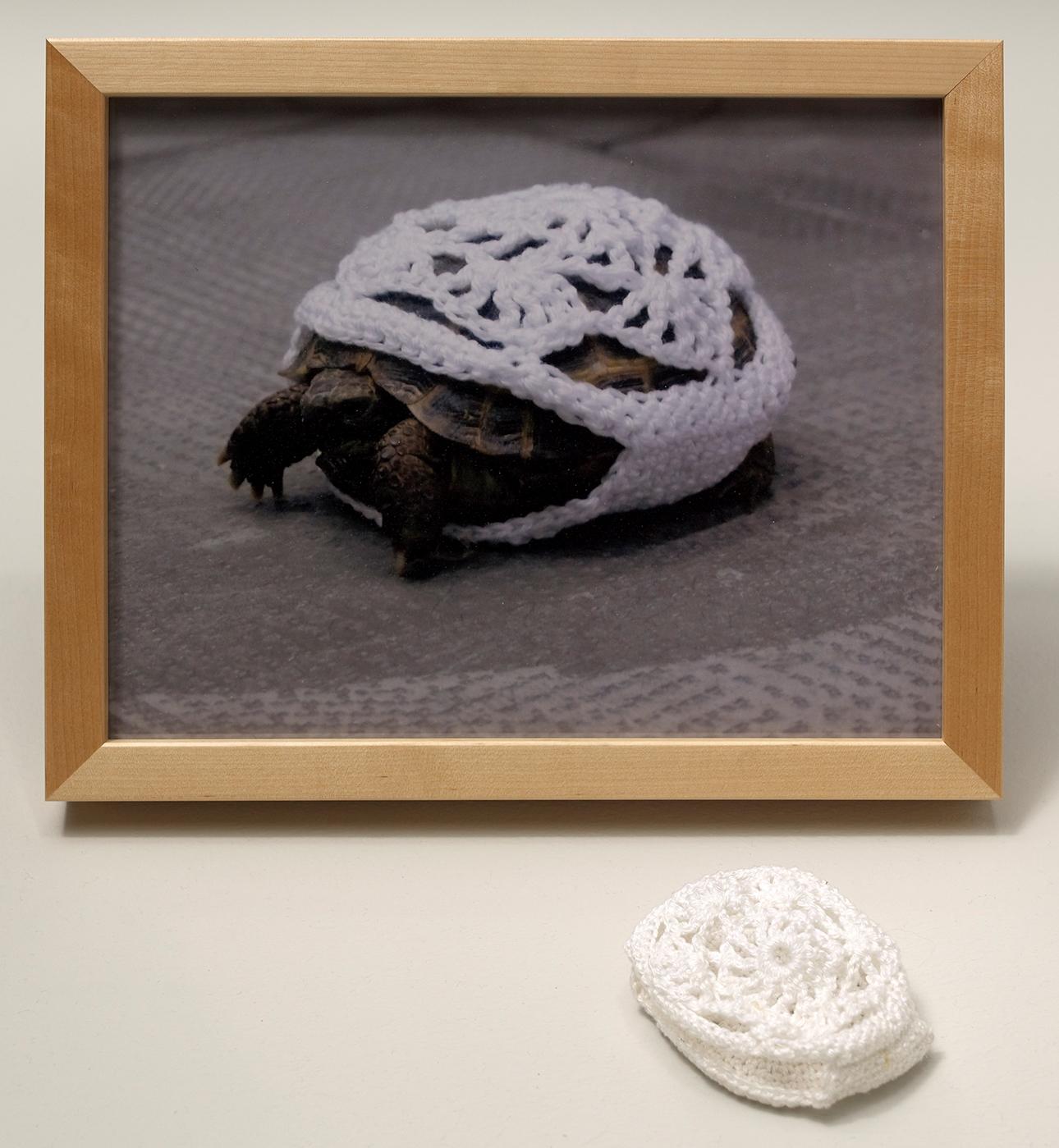 Encargos difíciles 5: Traje de ganchillo para tortuga realizado por costurera