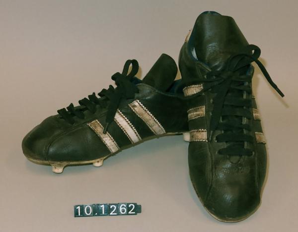 Par de zapatillas