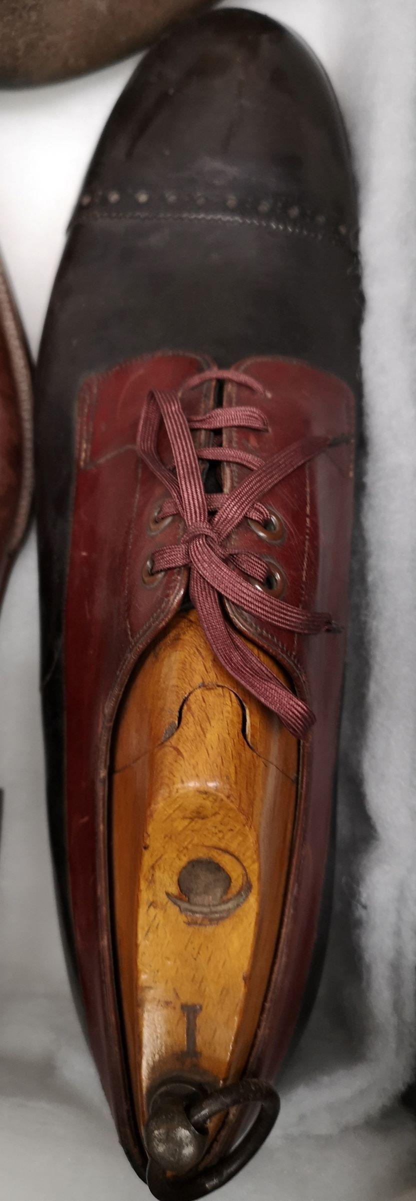 Modelo de zapato bicolor