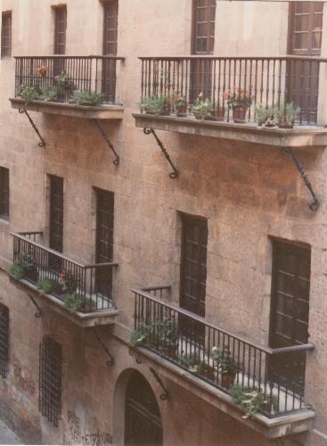 Barrotes tornapuntas de los balcones del Consulado de Bilbao (8)
