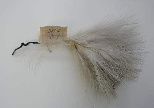 Penacho de plumas blancas- Coronela